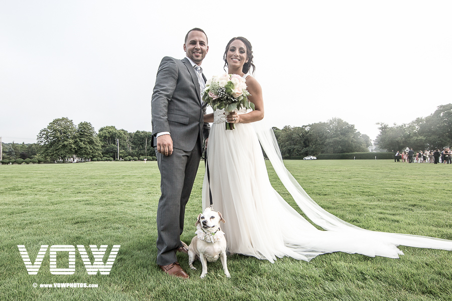 dog at the wedding ceremony