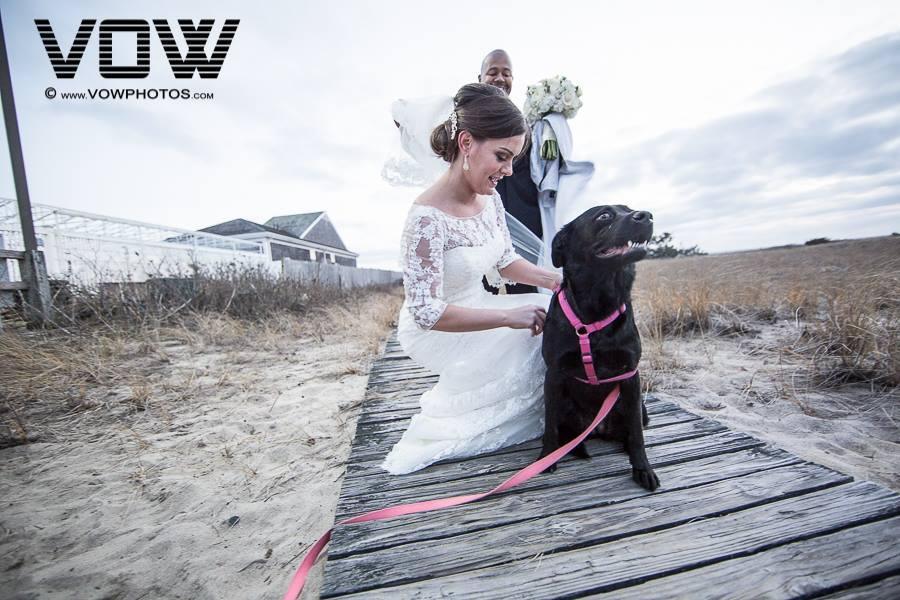 bride-and-dog-wedding